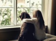 Pies lepszy niz rodzenstwo?