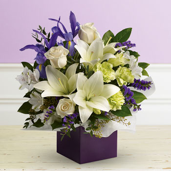 Save $10.49 Off The Classic Graceful Beauty