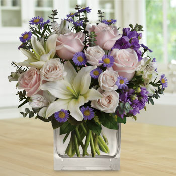 Save $15 OFF Our Watercolour Wishes Arrangement