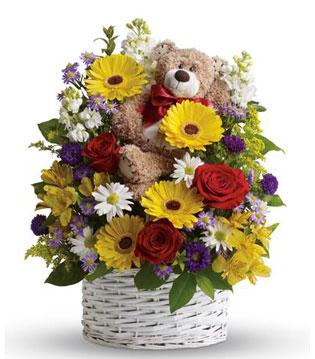 Cute & Cuddly Arrangement