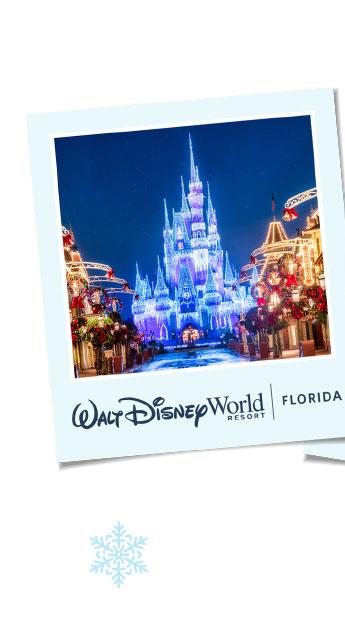 Walt Disney World Resort - Florida