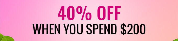 40% Off When You Spend $200