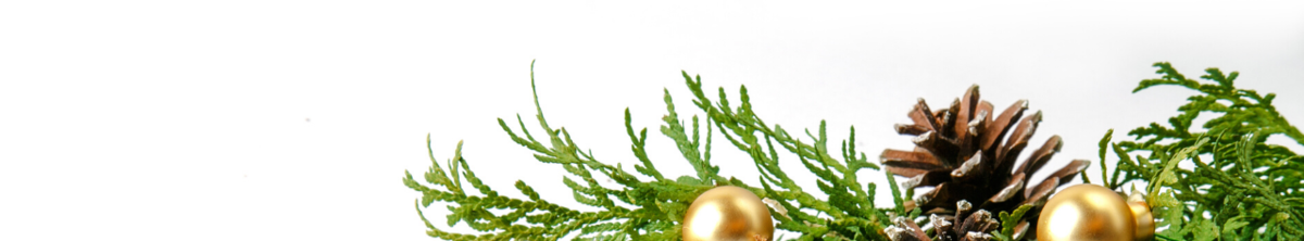 Pine branches with gold ornaments and pine cones.