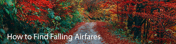 How to Find Falling Airfares