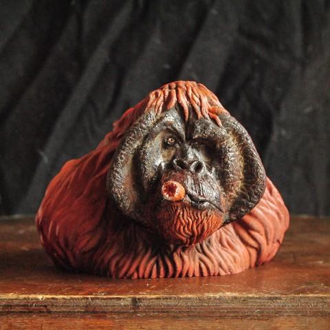 Orangutan bust by Tolgaaxu