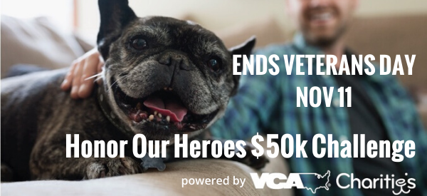 Honor Our Heroes $50k Challenge-email-1 .png