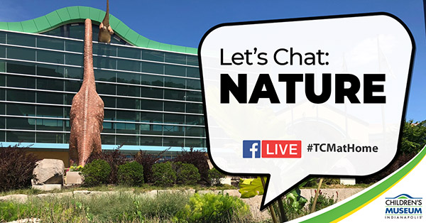 Let''s Chat: Nature