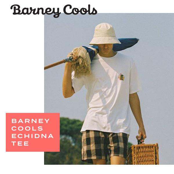 Barney Cools Echidna Tee