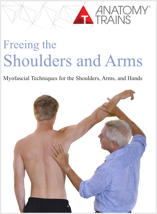 Tom Myers Freeing the Shoulders and Arms Video Course