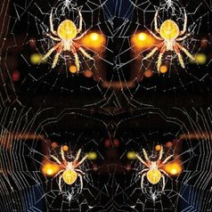 Nancy Bechtol - spider web mandala, 2019