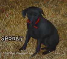 Lou Posner - spooky, 2016