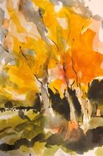 Daniel Clarke - autumn colors, 2020