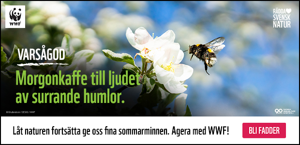 Annons: Agera med WWF