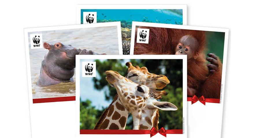 Köp en kärleksfull julgåva från WWF