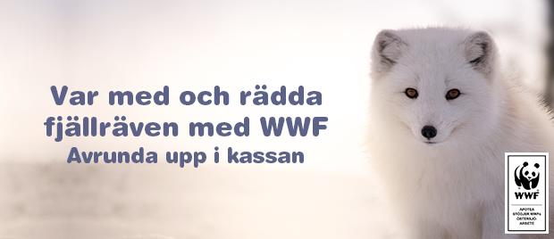 Rädda fjällräven med WWF.