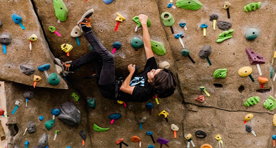 Willamalane - Rock Climber