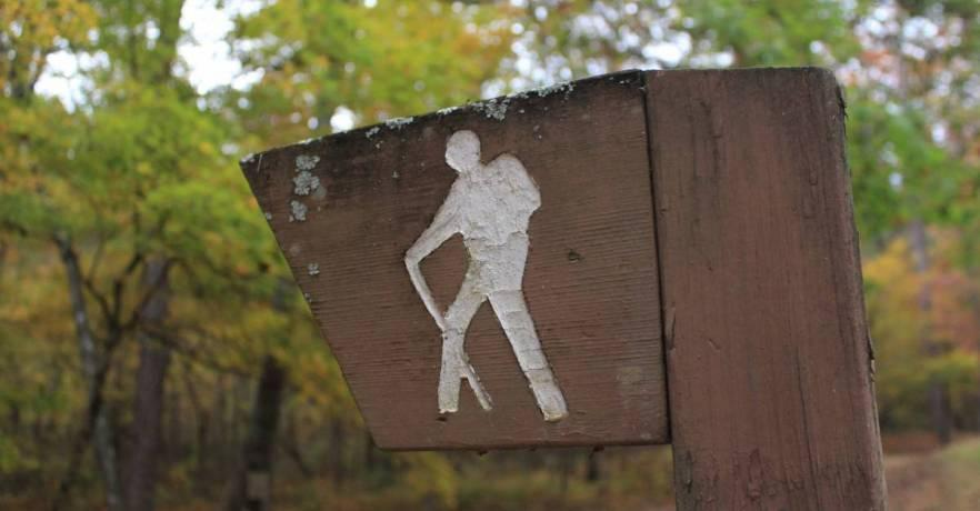 DSP Hiking