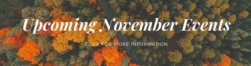 DSP november