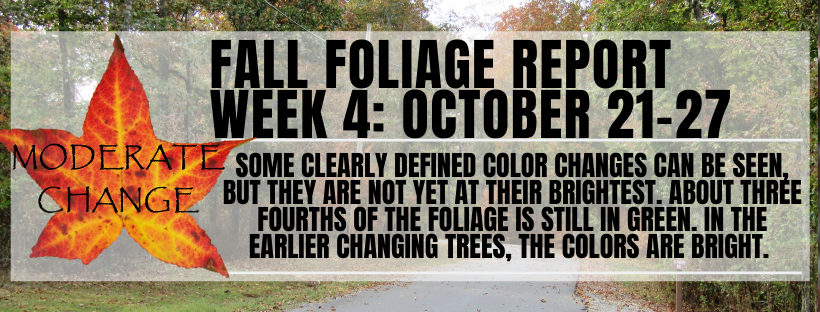 Fall Color Report W4