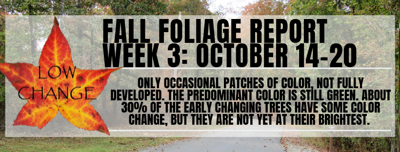 Fall Color Report Week 3