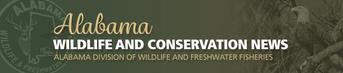 Wildlife and Conservation News Header