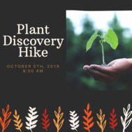 Plant Discovery Hike October DSP