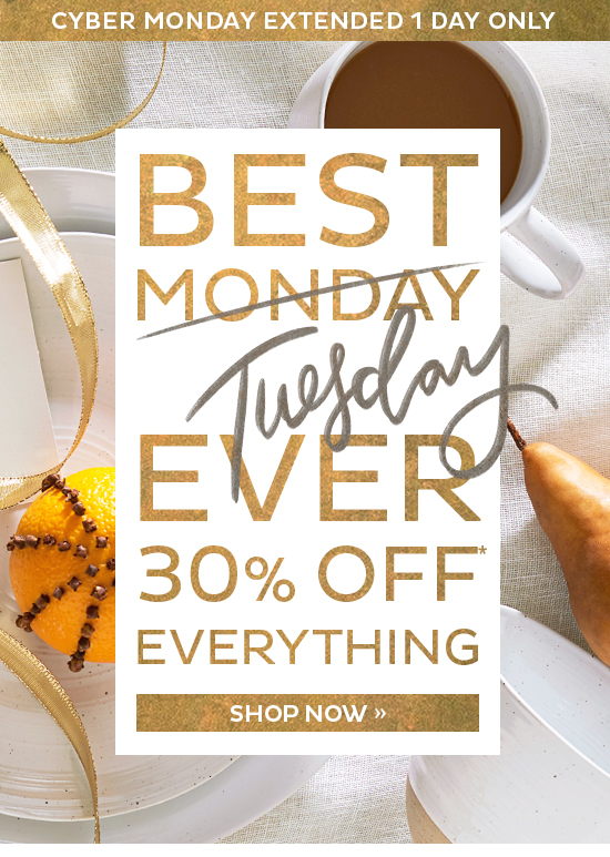 Best Tuesday Ever   30% Off Everything