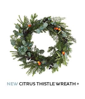 Citrus Thistle Wreath