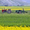 Agro Exports Increase by 13% to $3.8 Billion in Eight Months
