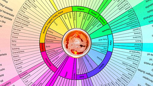 How to Identify Off-flavors in Beer