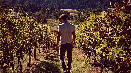 Why More California Winemakers Are Embracing Varietal Diversity